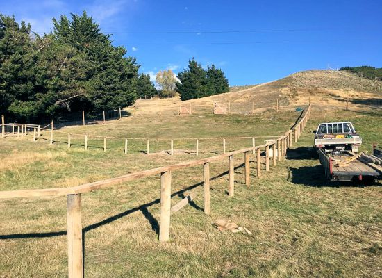 Single rail fencing for horses